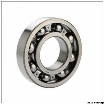 EBC 6204 C3 BULK  Ball Bearings